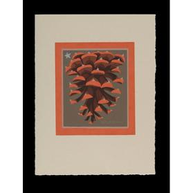 Untitled Holiday Card (Pinecone)