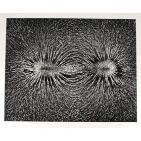 Magnetic Field (from the Retrospective Portfolio)