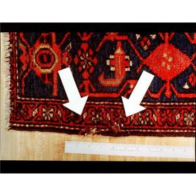 Exhibit C: Second Oriental Rug Chewed