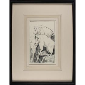 Untitled (Mountain Goats)
