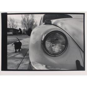 Untitled (Volkswagen and Dachshund)