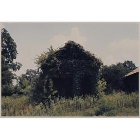 Building with False Brick Siding, Warsaw, Alabama
