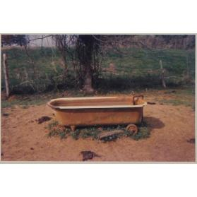 Bathtub as Watering Trough, near Greensboro, Alabama