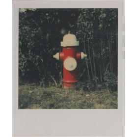 Untitled (Fire Hydrant)
