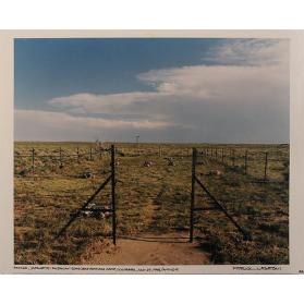 Amache, Japanese-American Concentration Camp, Colorado, July 29, 1994 / A-9-10-9 (from the series Japanese American Concentration Camps)