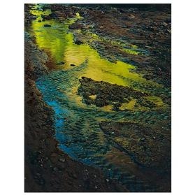 Green Reflections in Stream, Moqui Creek, Glen Canyon, Utah, Sept. 2, 1962